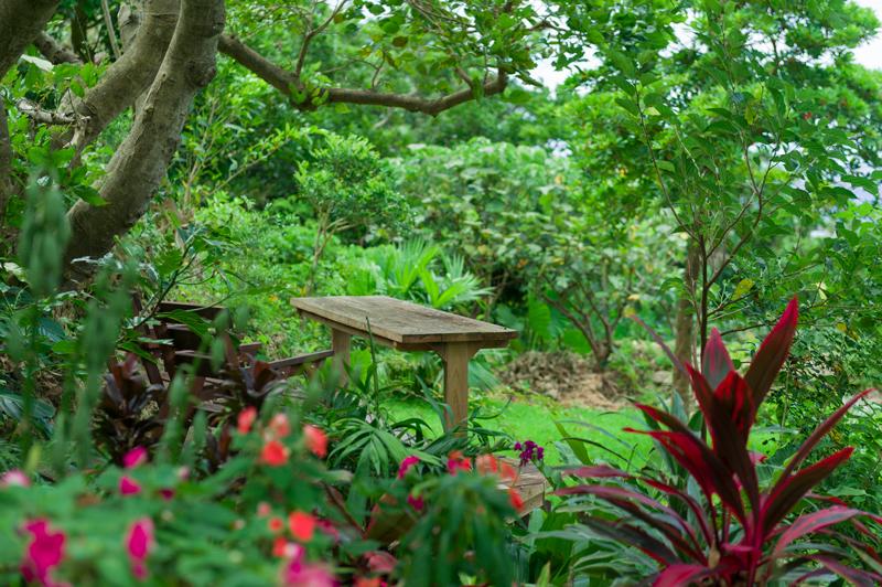 さちばるの庭img01